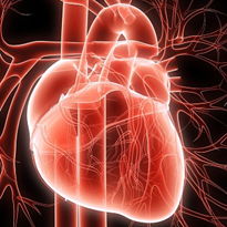 Landmark genetic find for cardiomyopathy patients