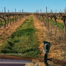 Robotic cars 'could' save wine industry $200m annually