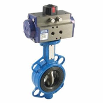 Ductile Iron Butterfly Valve | Series BFD