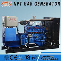 Customised CE Approved 100 kw LPG Generator