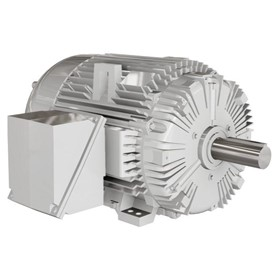 Low Voltage NEMA Motors