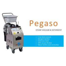 Pegaso Steam Cleaner 10A or 15A Single Phase
