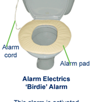 Stand-Up Toilet Alarm