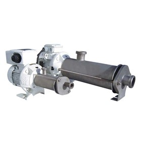 EcoMoineau Small Food Grade Progressive Cavity Pump