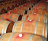 Wine File Winery Manager