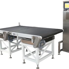 Weight Detection Dual Bed - HC-FL-2 - OCS