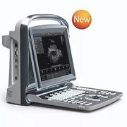Veterinary Ultrasound Machine | Eco1v