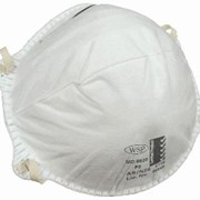P2 Disposable Respirators