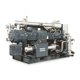 High Pressure Oil-Free Reciprocating Piston Air Compressors P