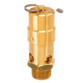 ASME Safety Valves | Model SW
