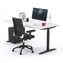 Ergonomic Stand Up Adjustable Height Electric Desk