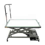Electric Lift Table with LED Light