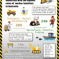 Work Related fatalities Infographic