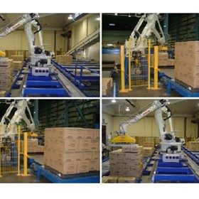 Palletizing Systems | Cartons