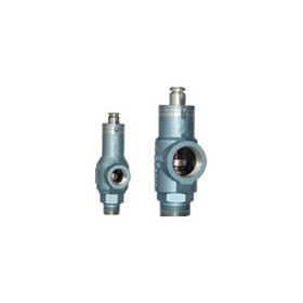 Safety Relief Valves | Mercer - 8100 Series