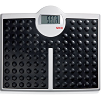 Digital High-Capacity Flat Scales | SECA
