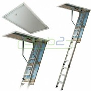 Climb2 Fold Down/Attic Ladder - Premium LD782.02