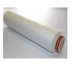 "Water Filter Spares Filter Cartridge, 1 Micron, 10"" - Flat Cap Style"