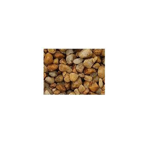 Cowra Gold Pebbles | 20mm