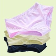 Incontinence Undergarments | Ladies Active