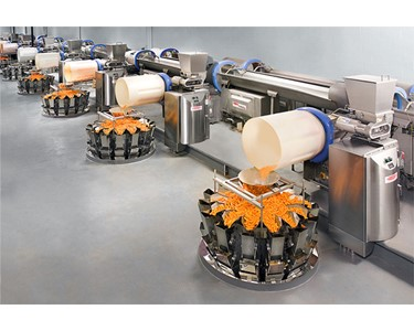 Typical Fastback®  Revolution on-machine seasoning line for snack food