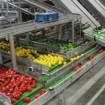 Belt Conveyor - Vitra