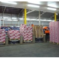 Palift saves back injuries when palletising fruit