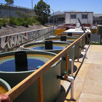 Ground Water Treatment