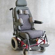 Kids Vehicle Wheelchair System - Carony