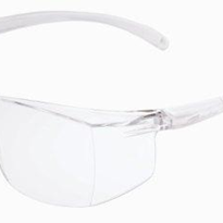 Safety Eyewear - SHUTDOWN 300 Safety Glasses