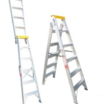 Ladder - Dual Purpose