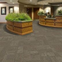 Modular Carpet Tiles | Bioscapes