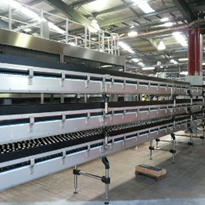 Case Conveying Systems