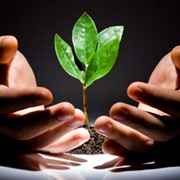 'Lead nurturing' - what's it all about?