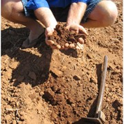 Soil Testing | Advanced Nutrients