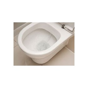 Toilet Seat Treatments | Sanitising Spray