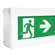 Emergency Exit Lighting | Vandal Proof
