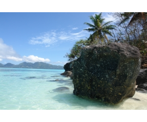The Seychelles, nice for a holiday, even better as a tax haven.