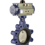 Cast Iron Lugged Butterfly Valve | Series BFL