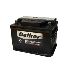 Silver Calcium Batteries | Delkor