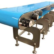 Ultra clean food grade conveyor - Hygenius
