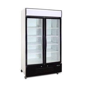 2 Door Upright Commercial Display Freezer