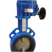 Challenger Valves & Actuators | Butterfly Valves - BFW100 HQ005