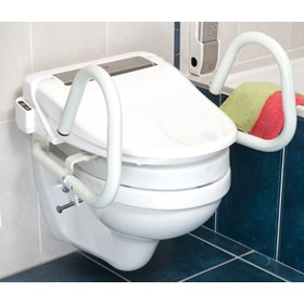 3 in 1 Toilet Support Rail - Standard