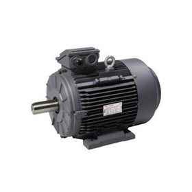 BOSS 5.5HP Three Phase Electric Motor BM5 -MEPS Compliant