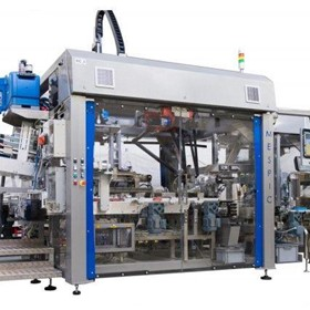 Integrated Case Packer & Palletizer - Aio Combo