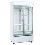 Skope B900 Display Fridge