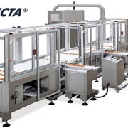 Feeding & Food Conveyor Systems | Selecta