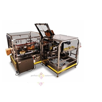 Econocaser Case Packer