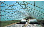 Agricultural Greenhouse Sheeting | Monarflex Ultra 250 mono